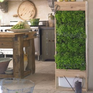 Kitchen living wall