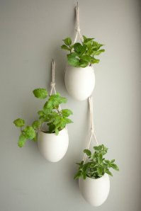 Clean and simple white containers that can hang in groupings or by themselves.