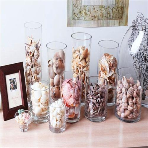 aquarium-decoration-natural-mix-conch-shells-500x500.jpg