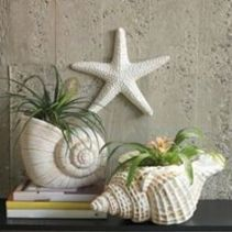 f0b878bcc157d8a926af24909637d337--sea-shells-decor-seashell-crafts