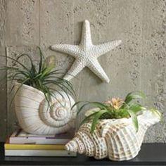 f0b878bcc157d8a926af24909637d337--sea-shells-decor-seashell-crafts