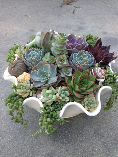top-10-succulent-decorating-ideas-26